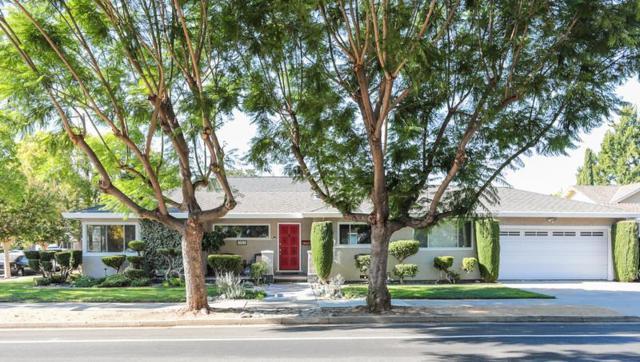 1021 Malone Rd, San Jose, CA 95125 (#ML81724843) :: Intero Real Estate