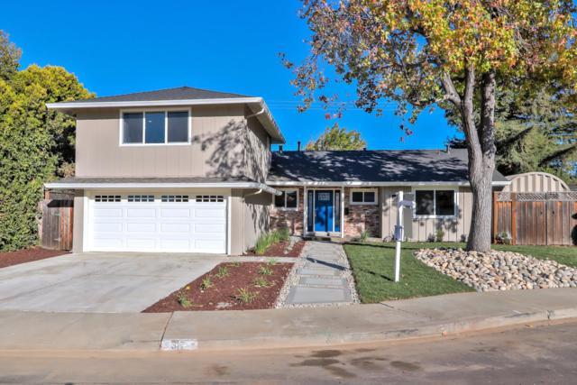 317 Montclair Dr, Santa Clara, CA 95051 (#ML81724865) :: The Warfel Gardin Group