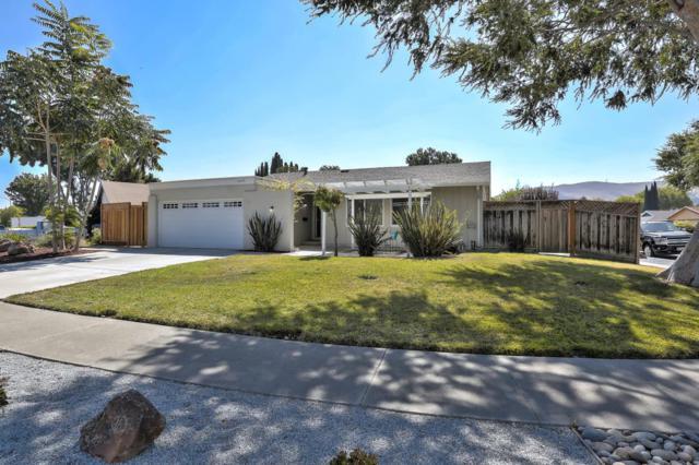 6485 Pemba Dr, San Jose, CA 95119 (#ML81724945) :: Intero Real Estate