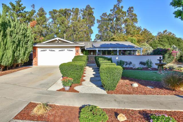 4056 Briarglen Dr, San Jose, CA 95118 (#ML81726020) :: von Kaenel Real Estate Group