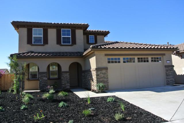 1172 La Colina St., Soledad, CA 93960 (#ML81726730) :: The Kulda Real Estate Group