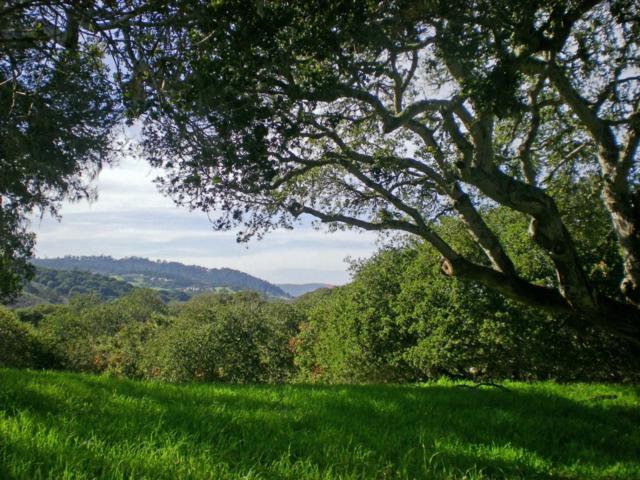 8345 Vista Monterra (Lot 151), Monterey, CA 93940 (#ML81726783) :: Strock Real Estate
