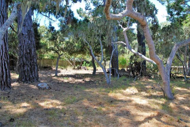 1138 Chaparral Rd, Pebble Beach, CA 93953 (#ML81726877) :: Brett Jennings Real Estate Experts