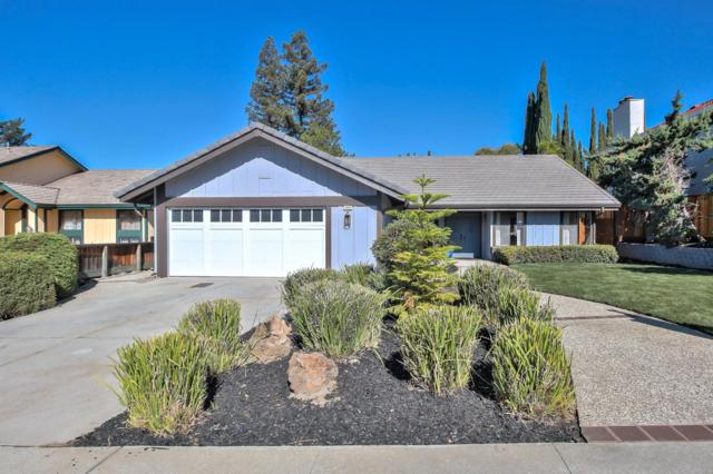 3483 Clover Oak Dr, San Jose, CA 95148 (#ML81726926) :: Julie Davis Sells Homes