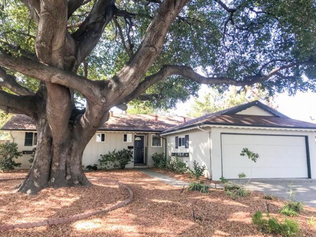 1133 Welch Ave, San Jose, CA 95117 (#ML81727476) :: The Goss Real Estate Group, Keller Williams Bay Area Estates