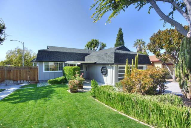 229 Spring Valley Ln, Milpitas, CA 95035 (#ML81727528) :: The Goss Real Estate Group, Keller Williams Bay Area Estates