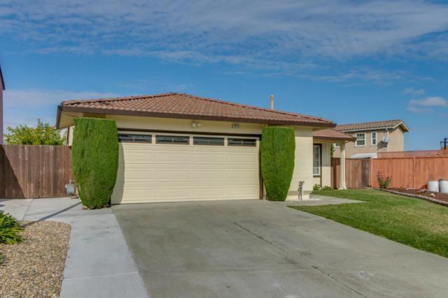 Cattail Ct, Union City, CA 94587 (#ML81727616) :: Strock Real Estate