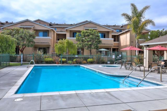 220 Everson Dr, Santa Cruz, CA 95060 (#ML81727731) :: Strock Real Estate