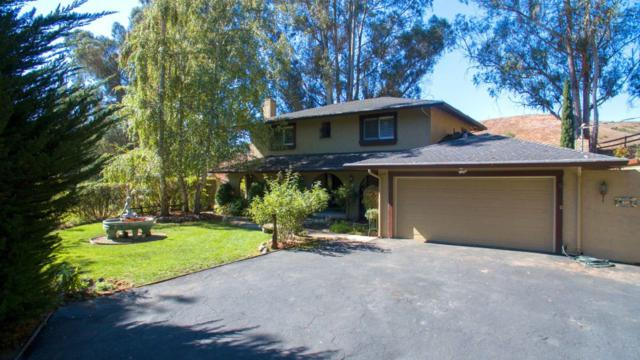 219 Merk Rd, Corralitos, CA 95076 (#ML81727836) :: Perisson Real Estate, Inc.