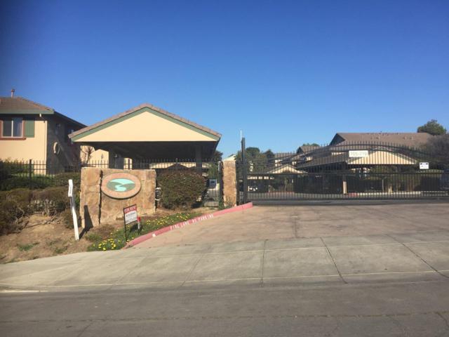 709 Garner Ave 203, Salinas, CA 93905 (#ML81727878) :: The Kulda Real Estate Group