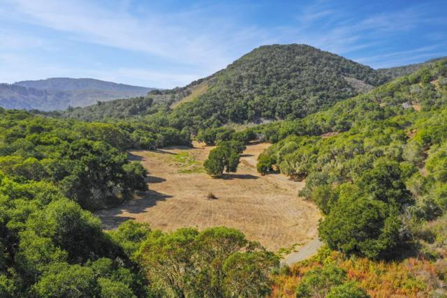 5 Corral Run, Carmel Valley, CA 93923 (#ML81728074) :: Julie Davis Sells Homes