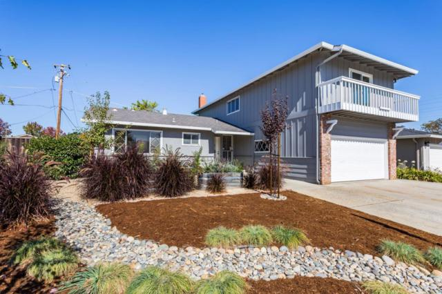 1731 Ewer Dr, San Jose, CA 95124 (#ML81728160) :: Julie Davis Sells Homes