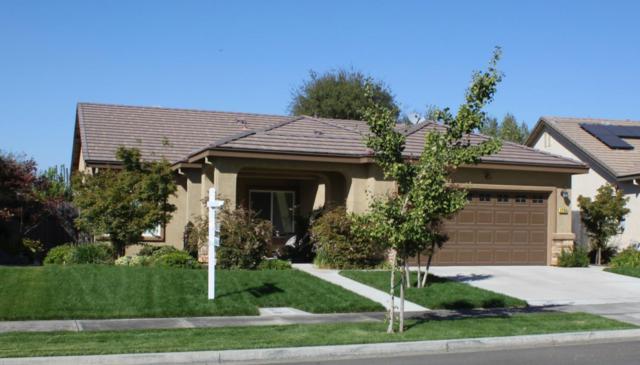 1738 Adams Creek Way, Oakdale, CA 95361 (#ML81728236) :: Strock Real Estate