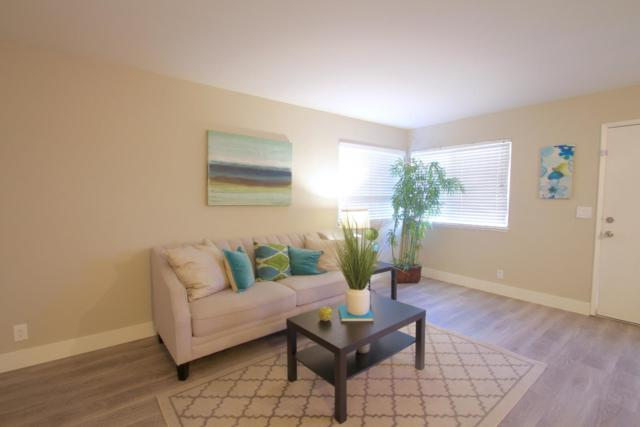 2486 Golzio Ct 2, San Jose, CA 95133 (#ML81728280) :: The Kulda Real Estate Group