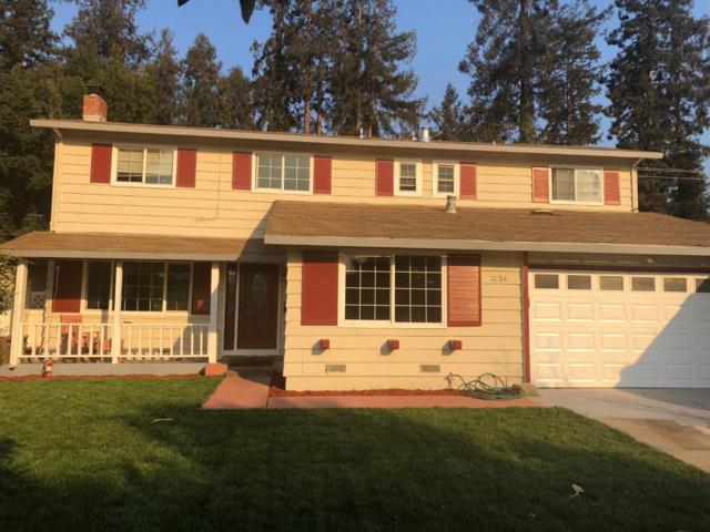 1034 Almarida Dr, San Jose, CA 95128 (#ML81728330) :: Strock Real Estate