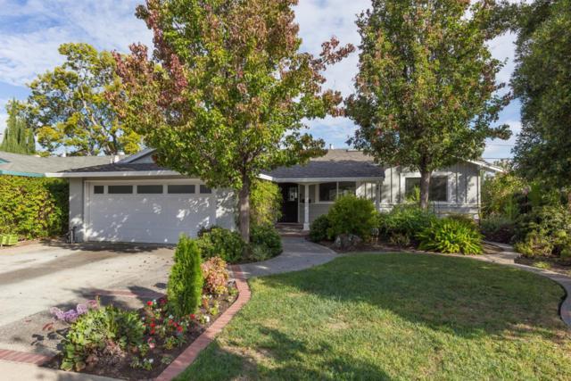 4467 Alex Dr, San Jose, CA 95130 (#ML81728341) :: Strock Real Estate