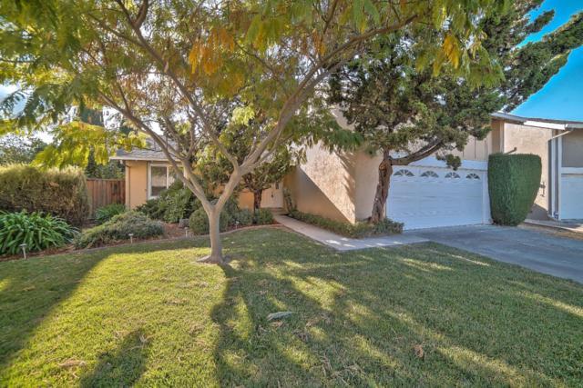 6123 Shelly Ct, San Jose, CA 95123 (#ML81728426) :: The Kulda Real Estate Group