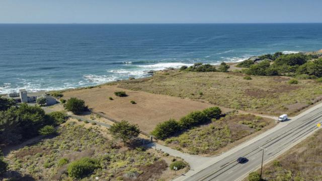 9841 Cabrillo Hwy, Pescadero, CA 94060 (#ML81728509) :: Strock Real Estate