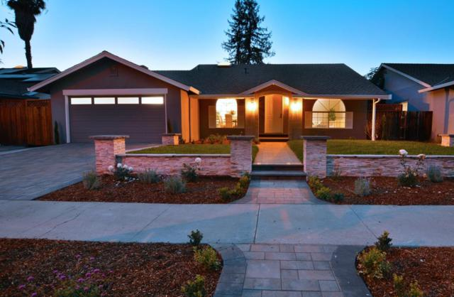 5785 Halleck Dr, San Jose, CA 95123 (#ML81728606) :: The Kulda Real Estate Group