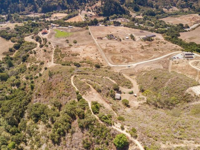 000 La Honda Rd, San Gregorio, CA 94074 (#ML81728629) :: Strock Real Estate