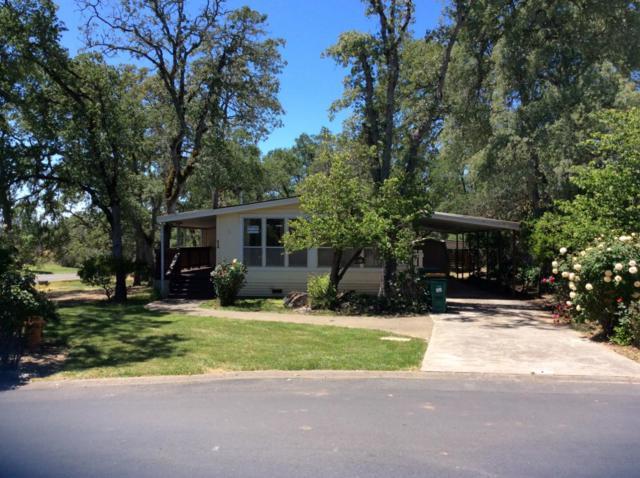 4700 Old French Town Rd 1, Shingle Springs, CA 95682 (#ML81729432) :: The Warfel Gardin Group