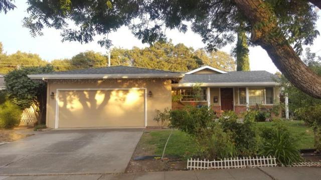 1204 Arlington Ln, San Jose, CA 95129 (#ML81729460) :: Perisson Real Estate, Inc.