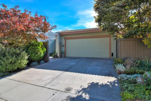 702 Birch Dr, Campbell, CA 95008 (#ML81730056) :: The Warfel Gardin Group