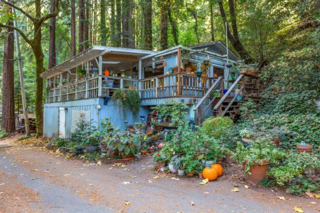 160 Woodland Dr, Ben Lomond, CA 95005 (#ML81730239) :: The Kulda Real Estate Group