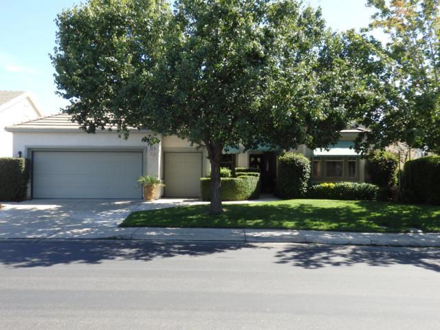 228 Upton Pyne Dr, Brentwood, CA 94513 (#ML81730397) :: The Kulda Real Estate Group