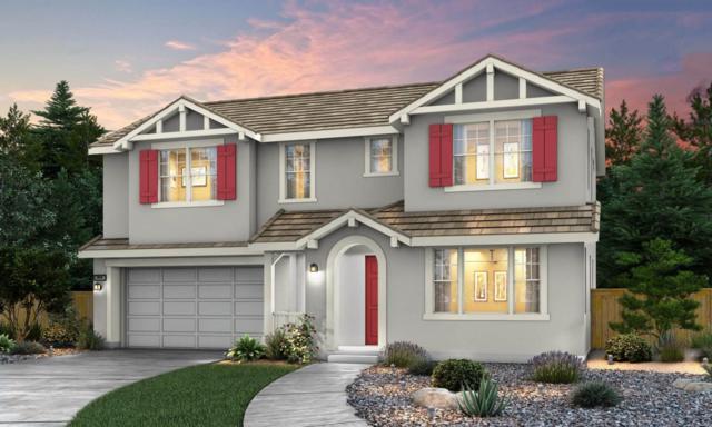 820 Amore St, Hollister, CA 95023 (#ML81730521) :: The Kulda Real Estate Group