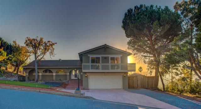 875 Tybalt Dr, San Jose, CA 95127 (#ML81730712) :: The Goss Real Estate Group, Keller Williams Bay Area Estates