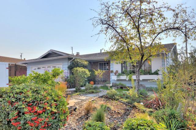 448 Skyway Dr, San Jose, CA 95111 (#ML81730785) :: The Goss Real Estate Group, Keller Williams Bay Area Estates
