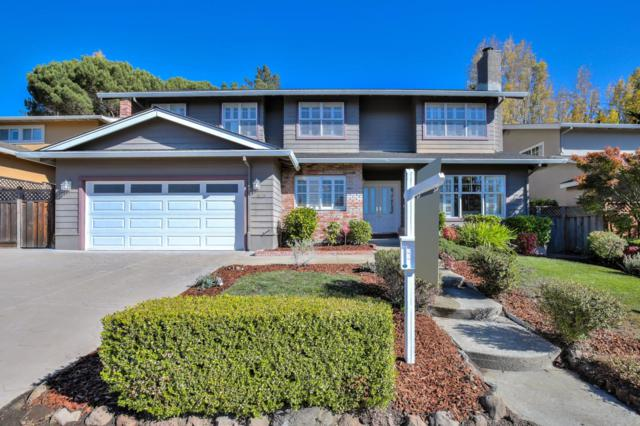 1829 Los Altos Dr, San Mateo, CA 94402 (#ML81730905) :: The Warfel Gardin Group