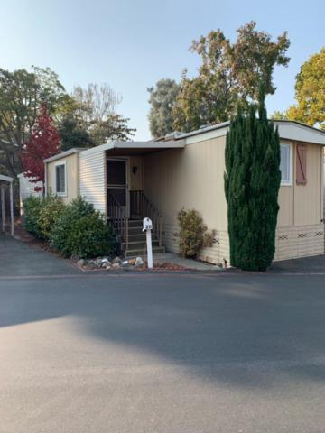 1201 Sycamore Ter 211, Sunnyvale, CA 94086 (#ML81730920) :: The Warfel Gardin Group