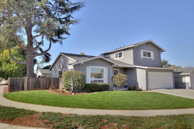 2435 Denevi Dr, San Jose, CA 95130 (#ML81731044) :: The Warfel Gardin Group