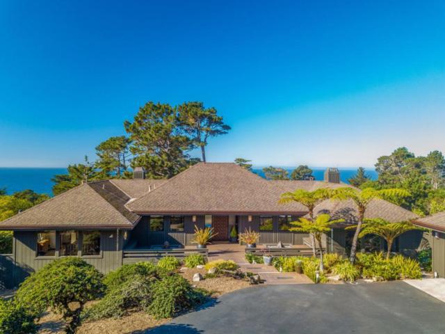 32684 Coast Ridge Dr, Carmel, CA 93923 (#ML81731071) :: The Kulda Real Estate Group