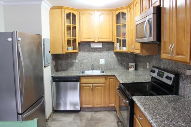 768 Calla Dr, Sunnyvale, CA 94086 (#ML81731373) :: The Kulda Real Estate Group
