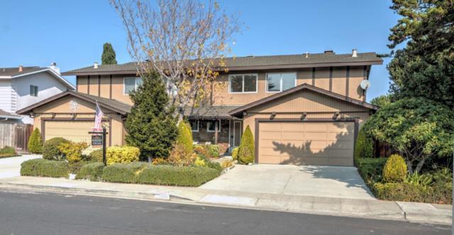 807-809 Comet Dr, Foster City, CA 94404 (#ML81731544) :: Perisson Real Estate, Inc.