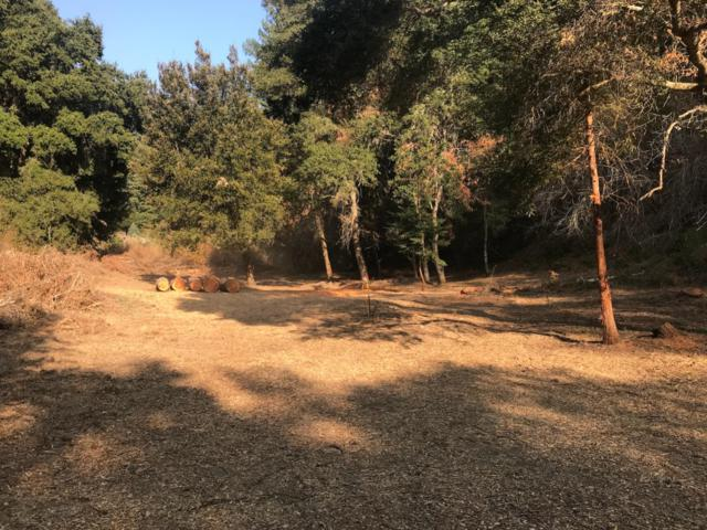 0 Coffeeberry Dr, Boulder Creek, CA 95006 (#ML81731647) :: The Warfel Gardin Group