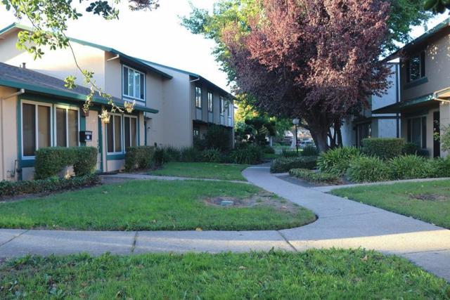 27478 Lemon Tree Ct, Hayward, CA 94545 (#ML81731944) :: The Gilmartin Group
