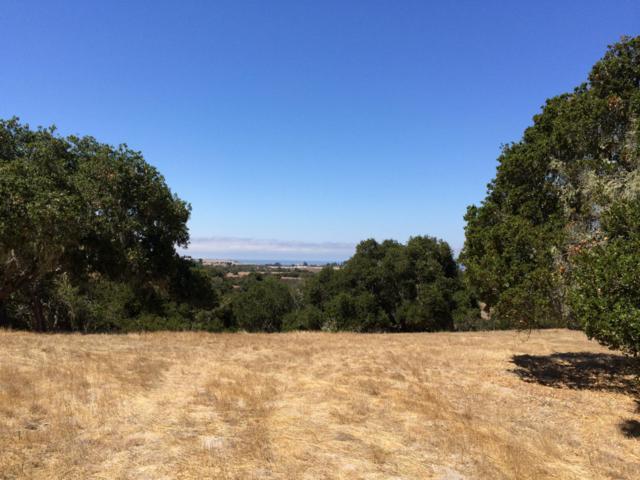 8180 Manjares (Lot 134), Monterey, CA 93940 (#ML81731962) :: Strock Real Estate