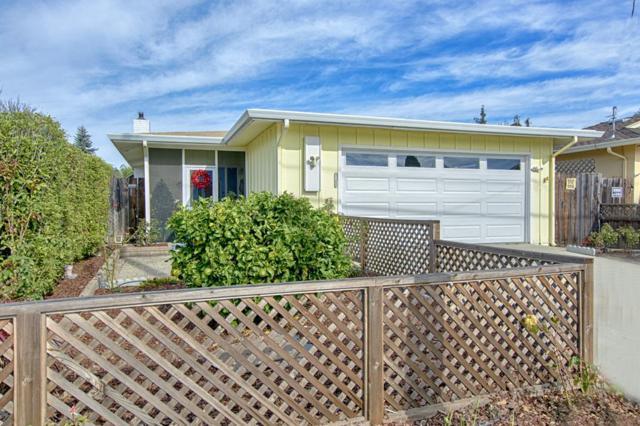 113 Almena St, Santa Cruz, CA 95062 (#ML81732016) :: The Warfel Gardin Group