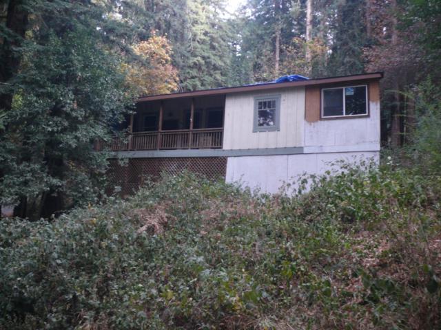 390 Redwood Dr, Boulder Creek, CA 95006 (#ML81732283) :: The Gilmartin Group