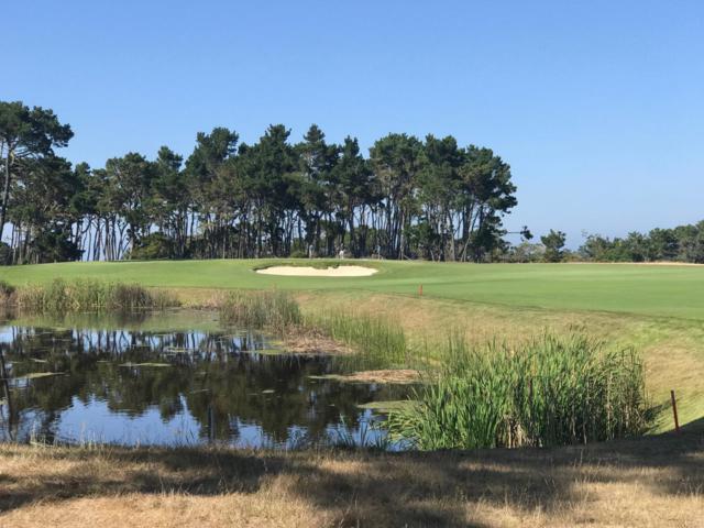 29 Poppy Lane, Pebble Beach, CA 93953 (#ML81732327) :: Brett Jennings Real Estate Experts