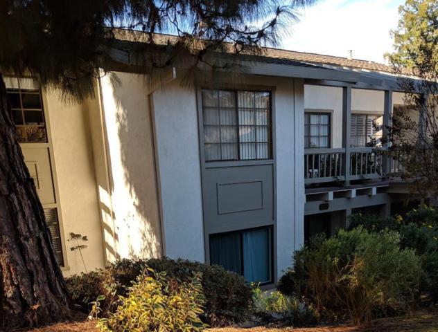 5323 Cribari Gln, San Jose, CA 95135 (#ML81732497) :: The Gilmartin Group