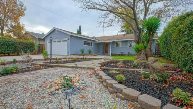1447 Stockbridge Dr, San Jose, CA 95130 (#ML81732818) :: Brett Jennings Real Estate Experts