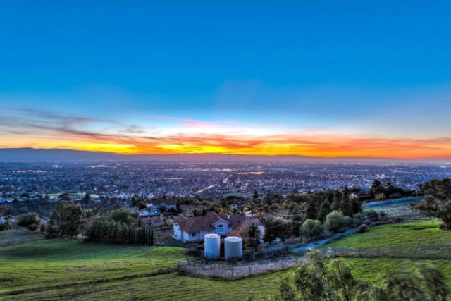 3875 Quail Canyon Ct, San Jose, CA 95148 (#ML81733201) :: The Goss Real Estate Group, Keller Williams Bay Area Estates