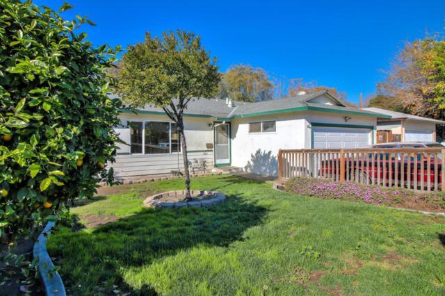 866 Turley Dr, San Jose, CA 95116 (#ML81733202) :: Maxreal Cupertino
