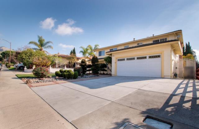 3668 Slopeview Dr, San Jose, CA 95148 (#ML81733313) :: Julie Davis Sells Homes