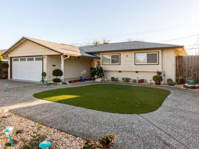 744 Jeffrey Ave, Campbell, CA 95008 (#ML81733347) :: The Goss Real Estate Group, Keller Williams Bay Area Estates